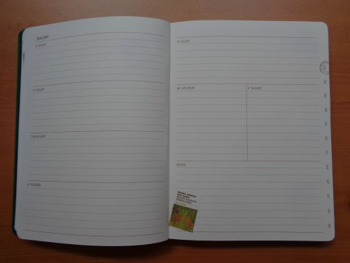 Starbucks 2015 Planner Unboxing Review January Weekly Calendar Page Full