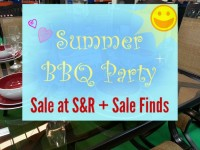Summer BBQ Party SnR Featured Image 1