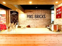 Pins and Bricks Featured Image