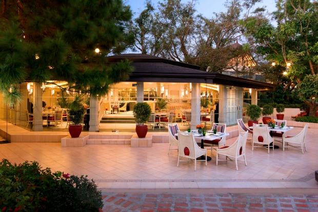 Taza Fresh Table Outdoor Twilight