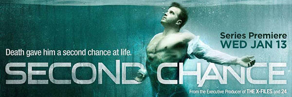 Second Chance Fox Poster