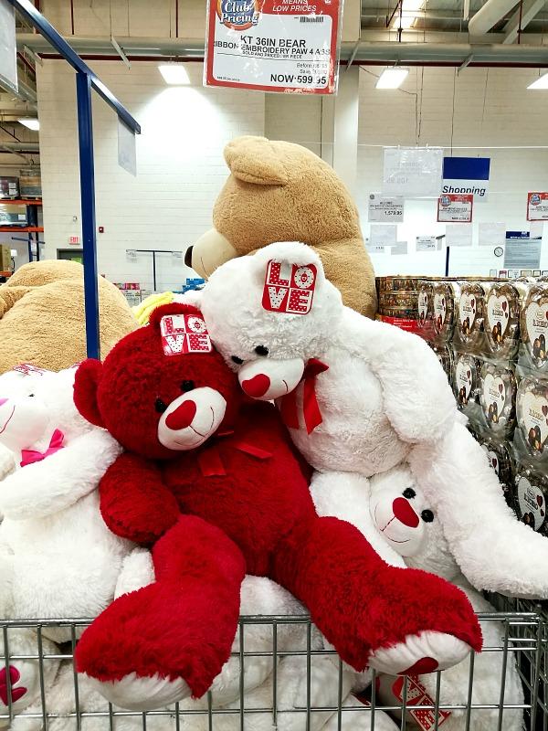 SnR Feb 2017 Valentines Bear