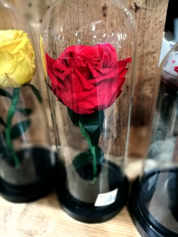 SnR Beauty and the Beast Rose