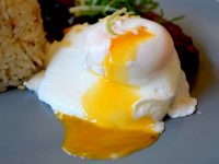 Early Bird Breakfast Club Poached Egg Runny Yolk