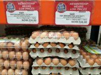 Brown-Eggs-Buy-2-Take-1