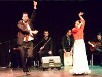 Origen Flamenco Manila 6